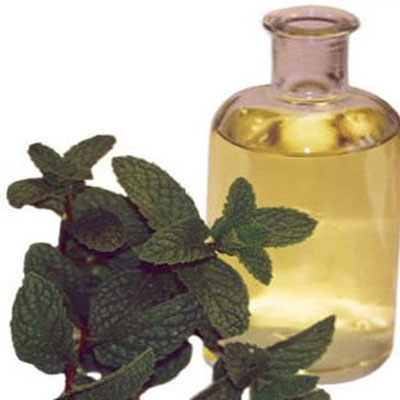 Mentha Piperita Oil Machilipatnam