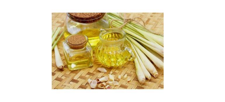 Lemongrass Oil In Banka