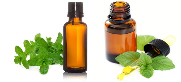 Mentha Citrata Oil In Greenland