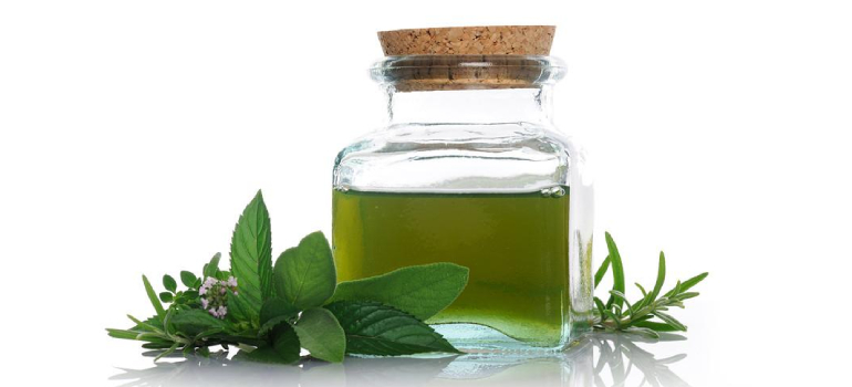 Mentha Spearmint Oil In Chandauli